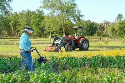 Kmetijske dejavnosti